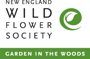 new england wildflower society logo